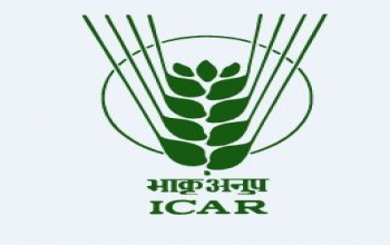ICAR International Fellowships for the Year 2019-20